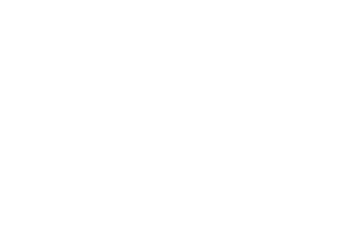 Lady Brian Official Store